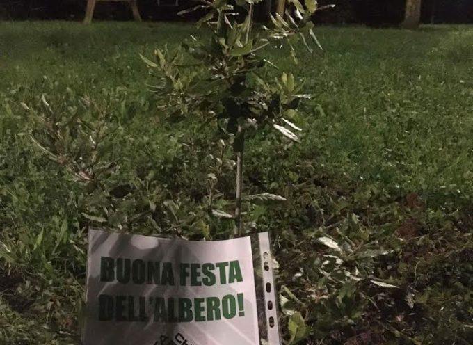 Festa dell'albero. A Montecarlo piantato un leccio dal gruppo ecologista di CasaPound.