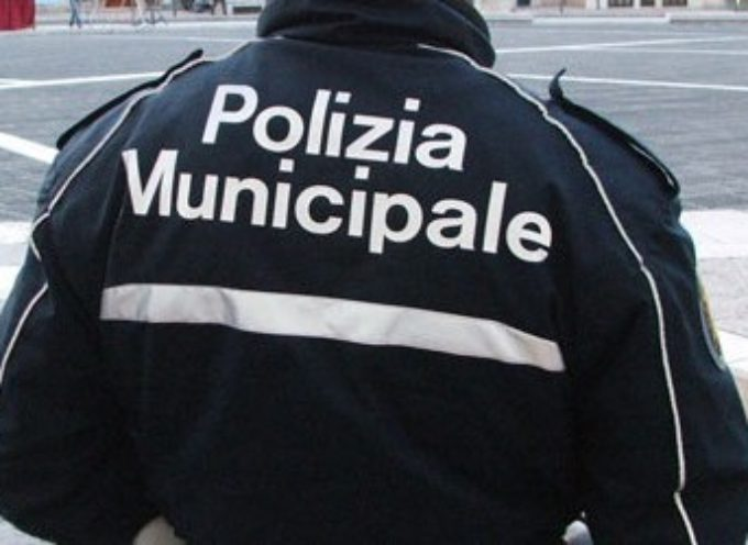 Polizia Municipale: aumentano le sanzioni al codice della strada e cresce la capacità operativa del Corpo, A SERAVEZZA