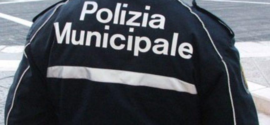 LUCCA – La Polizia Municipale identifica e denuncia gli autori di furti in un supermercato del centro storico