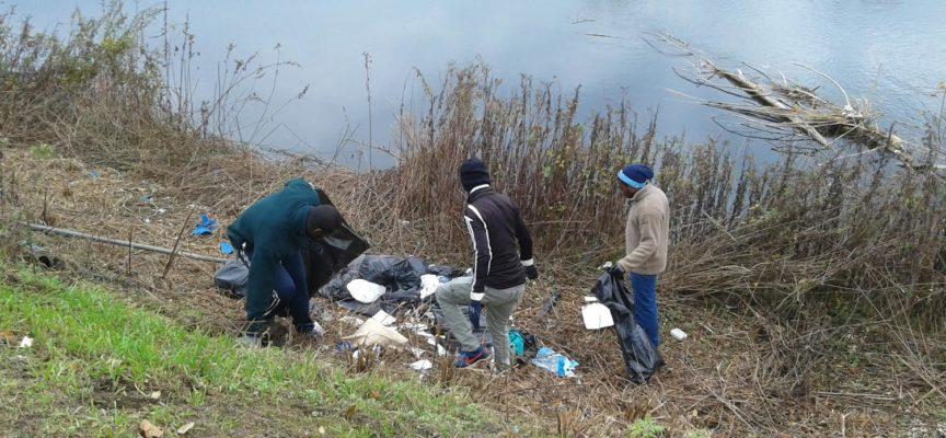 Pulizia del fiume Serchio: raccolti oltre 100 sacchi di rifiuti