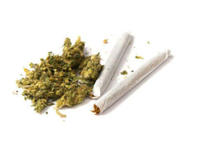 Megastudio su Cannabis: possibile aumento dei pericoli di infarto tra i consumatori già cardiopatici o con fattori di rischio coronarici