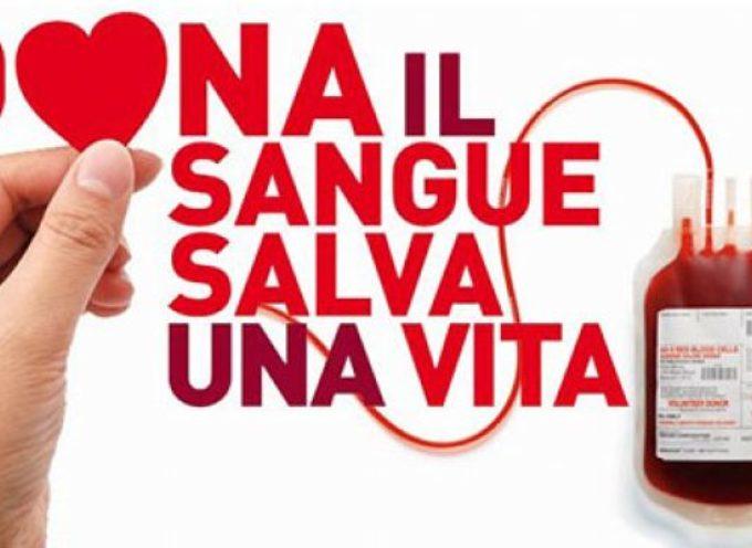"""Donazioni di sangue, l'appello del responsabile: """"Abbiamo bisogno di tutti"""""""