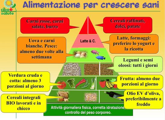 La Piramide Alimentare Toscana per valorizzare i prodotti locali:  approvata mozione di Ilaria Giovannetti (Pd)