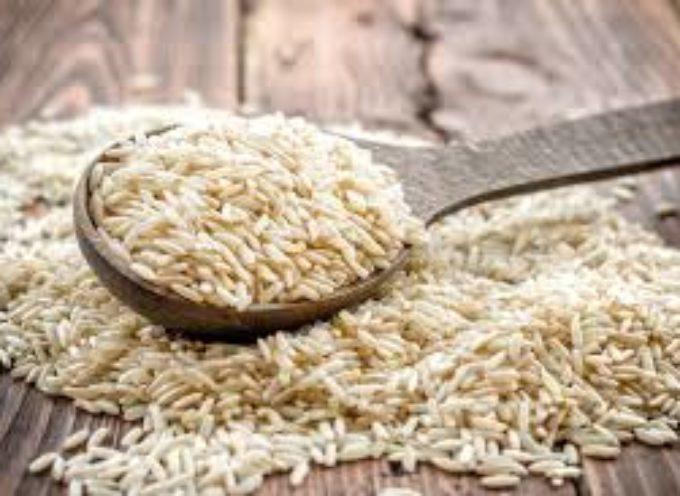 Qual è il miglior tipo di riso? Bianco, Nero, Rosso o Integrale