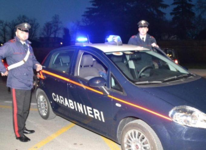 I ladri di nuovo in azione nella Piana di Lucca.
