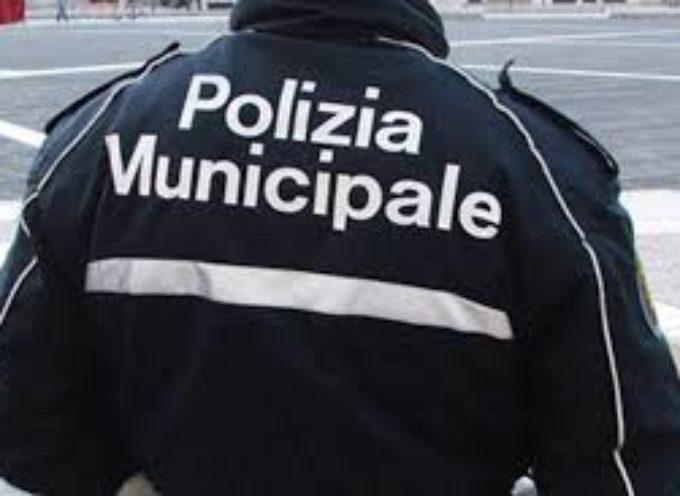 LUCCA – CORSO CISL  AGENTE DI POLIZIA MUNICIPALE INIZIO E ISCRIZIONE DOMANI SERA, FINO AL 28 MARZO