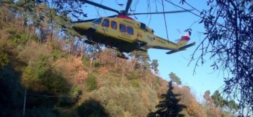 MARLIA – un uomo e rimasto ferito dalla caduta di un albero, che stava tagliando