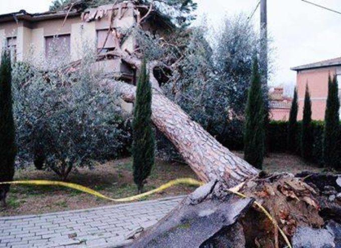 Rimborsi a privati danneggiati da eventi calamitosi