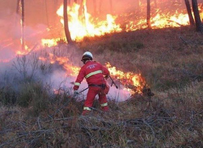 incendi boschivi in valle