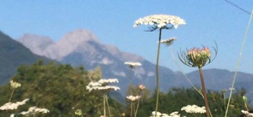 Situazione meteo da venerdì 17 a domenica 19 marzo in valle del serchio