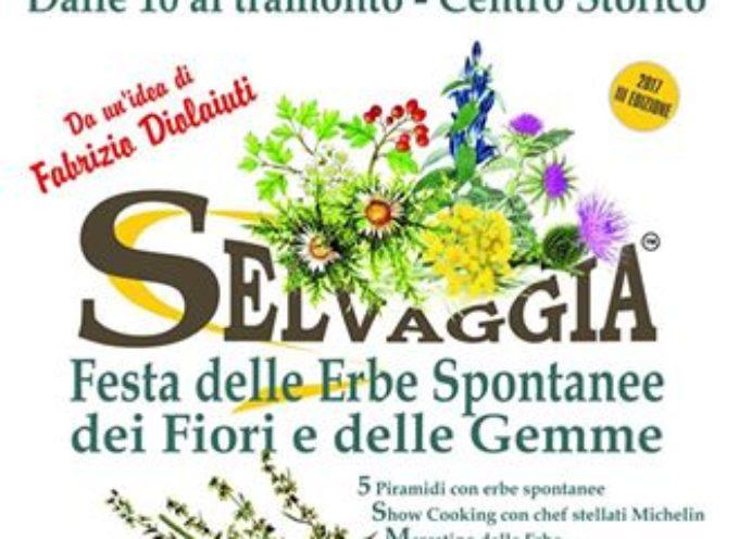 Torna 'Selvaggia', la Garfagnana e la Valle del Serchio festeggiano le erbe spontanee