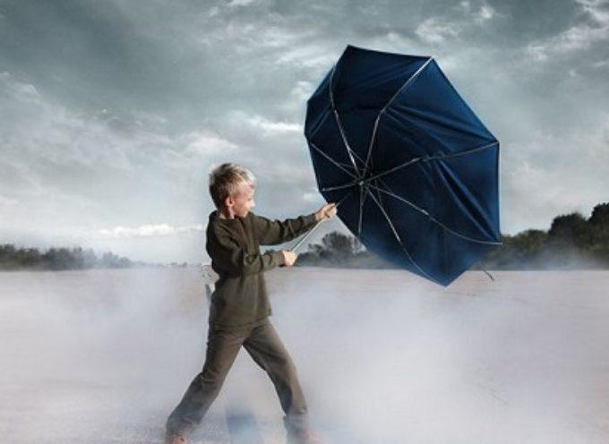 ALLERTA CODICE ARANCIO per vento nei Comuni di Borgo a Mozzano e Pescaglia