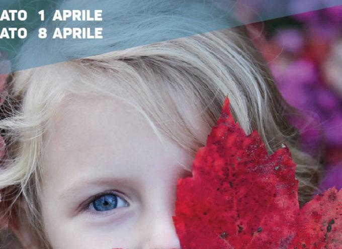 1 e 8 aprile a Lucca visite gratuite per bimbi da 3 a 12 anni