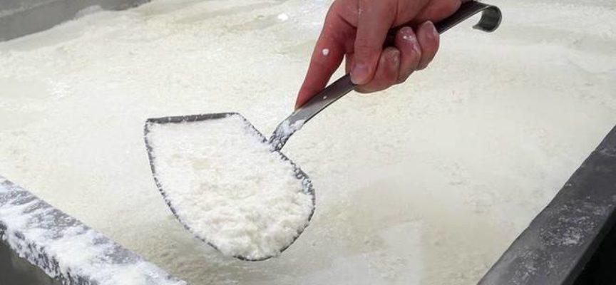 """Finto latte Made in Italy. Il formaggio e la mozzarella sono """"italiani"""", il latte è straniero"""