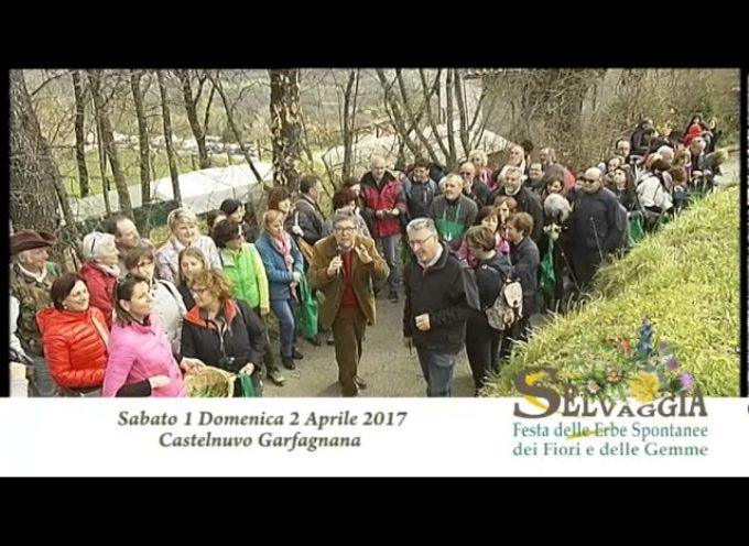 1-2 Aprile 2017 a Castelnuovo Garfagnana c'è Selvaggia[video]