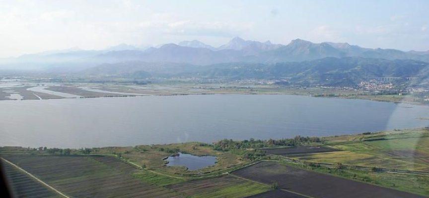 """Lago di Massaciuccoli, """"Tubone"""" del Serchio"""