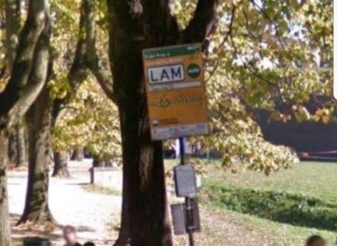 Marietti (Fratelli d'Italia) fermate bus Lucca
