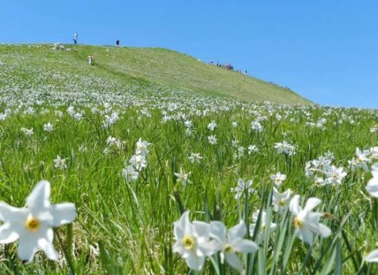 Seconda ascesa dell'anno al Monte Croce con Wild Trails!