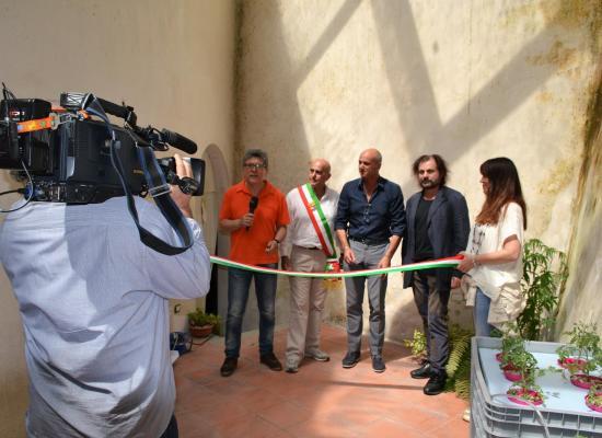 Il Primo Impianto al Mondo  di coltura idroponica con acqua termale a Bagni di Lucca