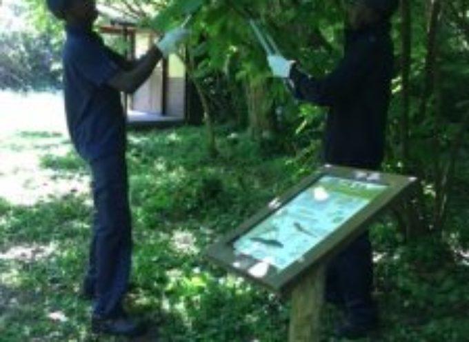 I volontari e i migranti tornano a curare le oasi di Bottaccio, Tanali e Gherardesca: