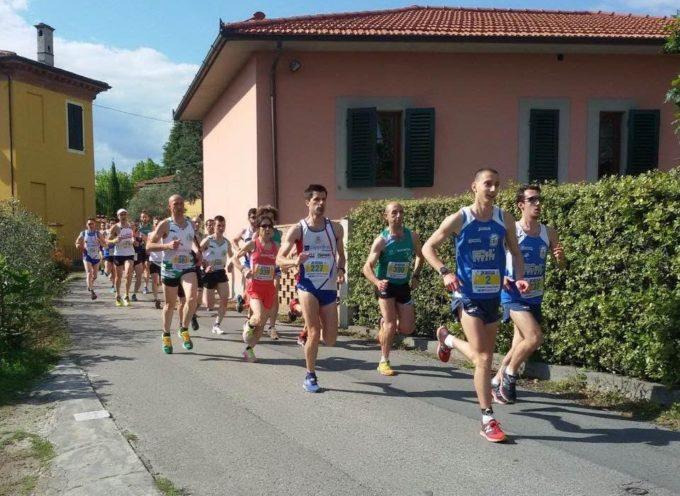GS Orecchiella, ottimi risultati alla Marilla Run e Trail  0-900