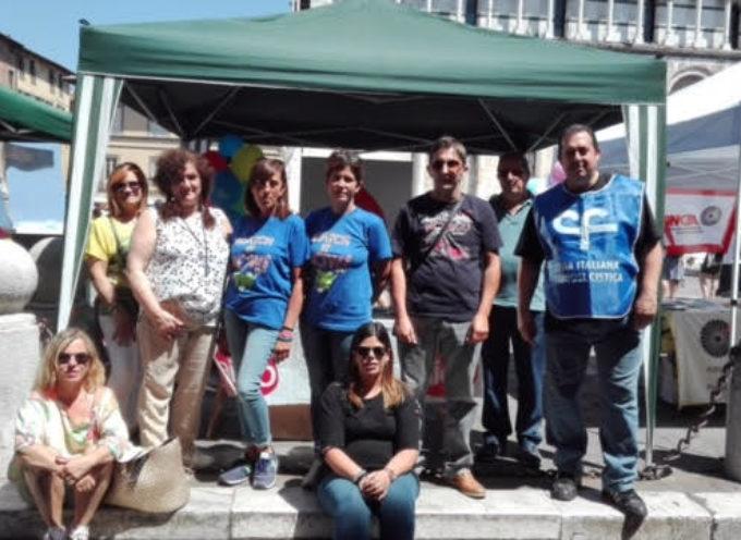 Successo della giornata della donazione degli organi a Lucca