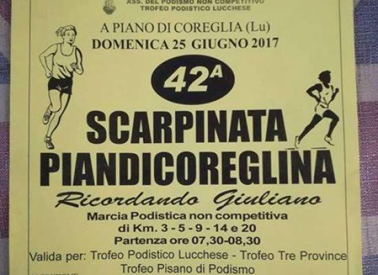 42ª SCARPINATA a  PIANDICOREGLINA  DOMENICA  25 GIUGNO