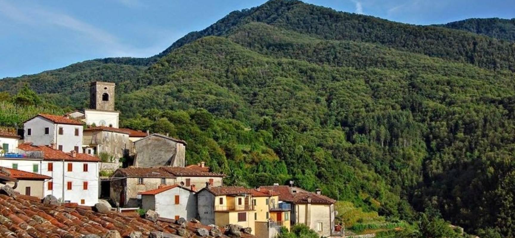 """Il Monte Palodina luogo dei mille misteri. La leggenda del """"lucertolone verde"""""""