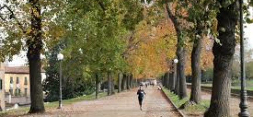 LE Mura di Lucca.