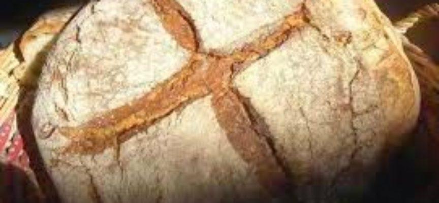 La povertà in Garfagnana.Quando per il 50° compleanno del principe vennero distribuite mille porzioni di pane bianco…