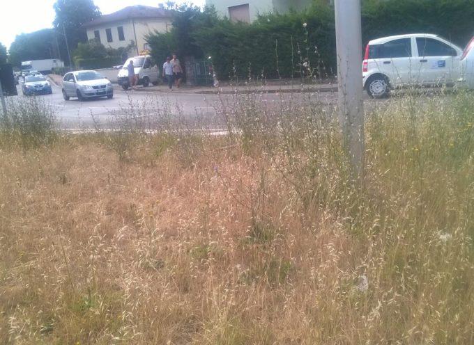 """Lotti (Lucca in Movimento) """" Questa amministrazione ha trascurato la sicurezza stradale per asfaltature e sfalcio dell'erba"""""""