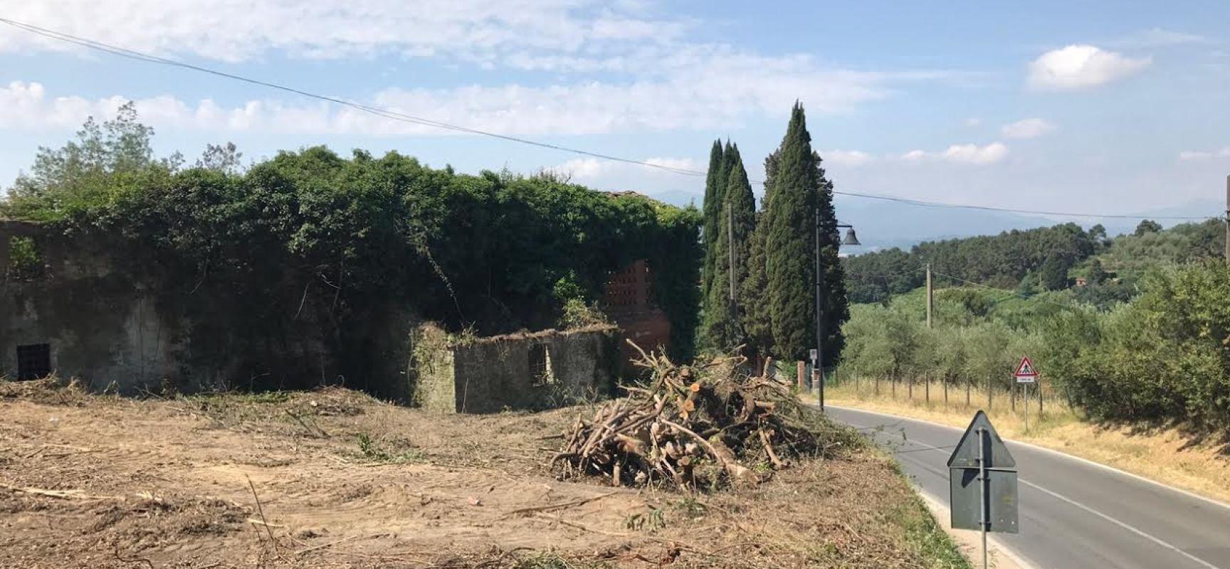 montecarlo – AREE E CAMPI INCOLTI, CONTINUA LA CAMPAGNA PER IL DECORO E LA SICUREZZA DEL  COMUNE.