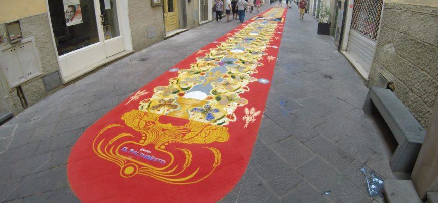 TAPPETI DI SEGATURA, VINCONO EX EQUO SCUOLE PISTELLI E GREENAWAY
