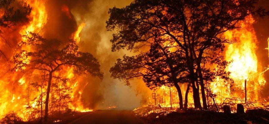Prevenzione incendi: attivati i servizi di vedettaggio e pattugliamento