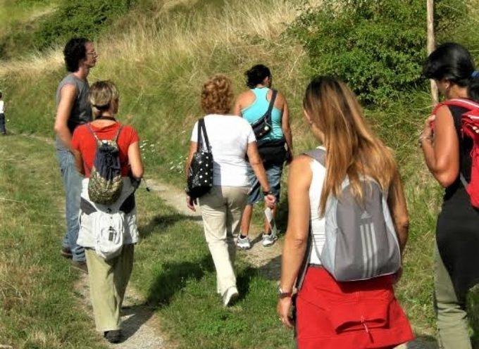 """""""Ecoland – educazione e natura"""" organizza per domenica 9 luglio una giornata di escursioni gratuite sui Sentieri del Moro,"""