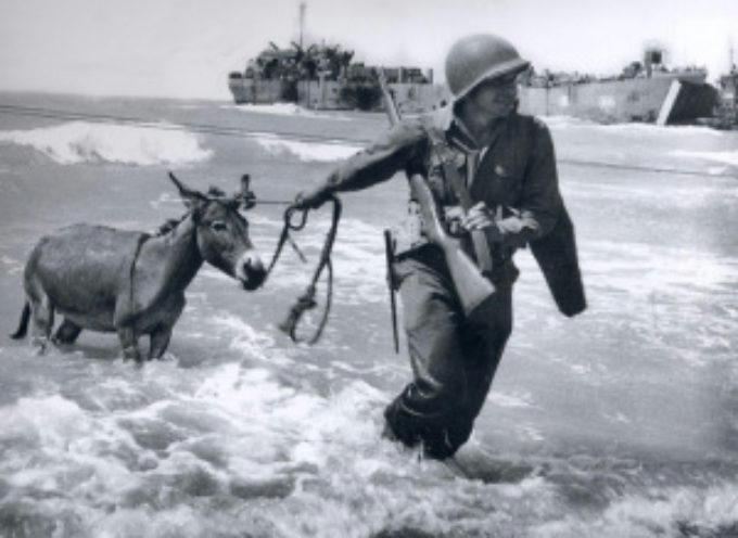 accadde oggi – 10 luglio 1943, Sbarco degli Alleati in Sicilia