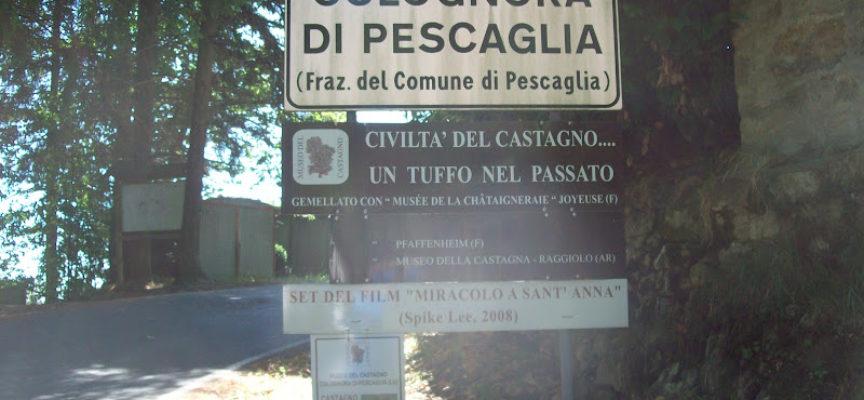 COLOGNORA DI PESCAGLIA –  COMMEDIA SOTTO I CASTAGNI