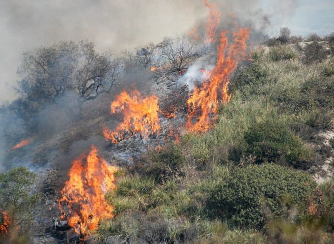 Prevenzione incendi: Toscana ha introdotto piani specifici e comunità di bosco