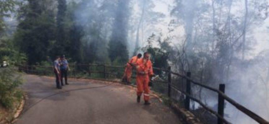 Incendio di bosco nella tenuta del Ciocco, interviene l'elicottero