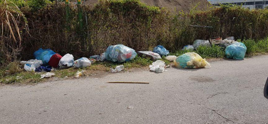 Le tematiche ambientali sono ancora al centro del mirino di Patto Civico.
