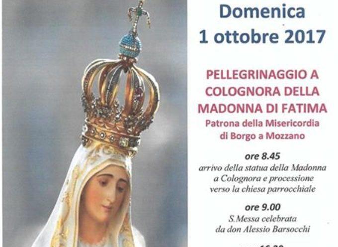 IN PELLEGRINAGGIO CON LA MADONNA DI FATIMA,  DOMENICA  1 OTTOBRE 2017.