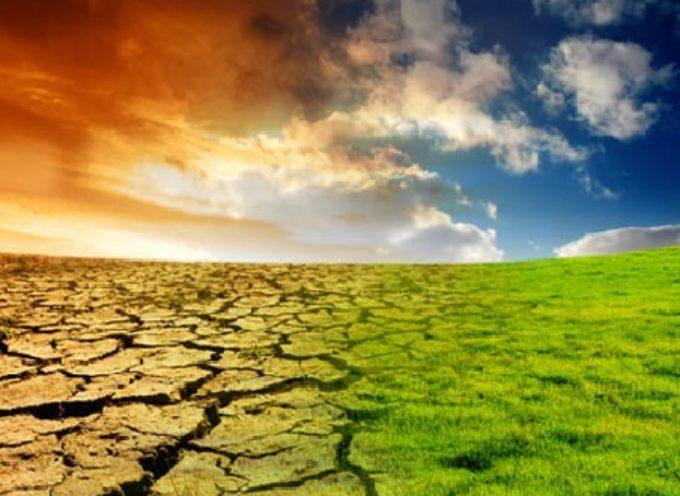 Consumi in aumento a causa del riscaldamento globale