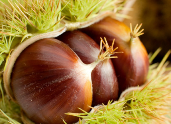 il frutto di stagione, le Castagne proprietà e valori nutrizionali