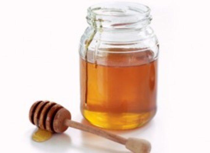 lucca – la produzione del miele del 2017 da dimenticare