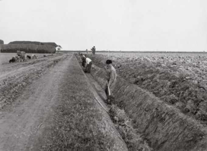 I lavori di stagione: la manutenzione dei fossi