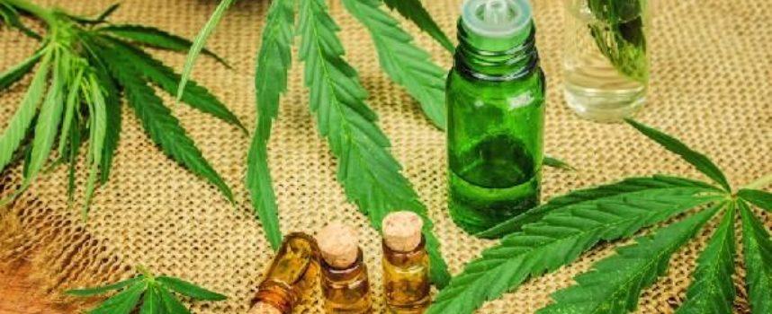 """Consiglio superiore della sanità blocca la vendita della cannabis """"light""""."""