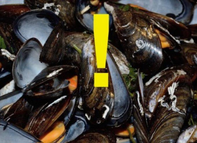 """Biotossine algali nelle cozze sottovuoto. Ministero salute: """"Stop a consumo mitili prodotti da Euroittica srl"""""""