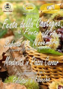 festa-11-novembre