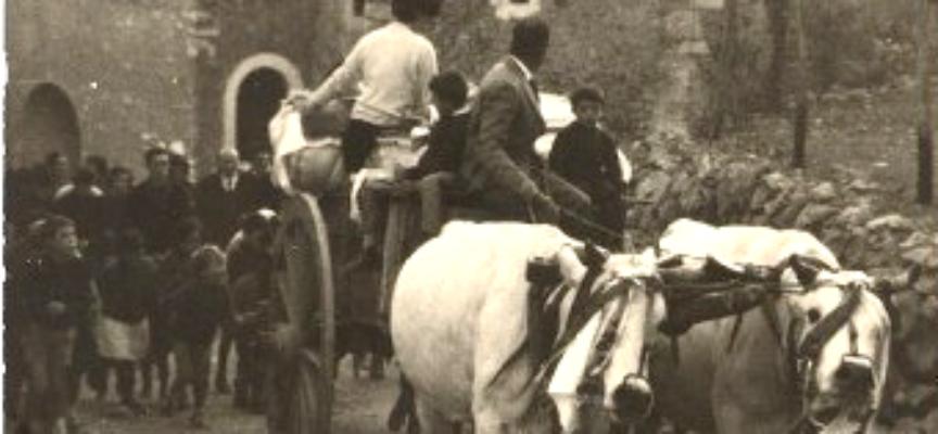 La ricorrenza di San Martino fu per secoli una data cruciale, per la mezzadria: