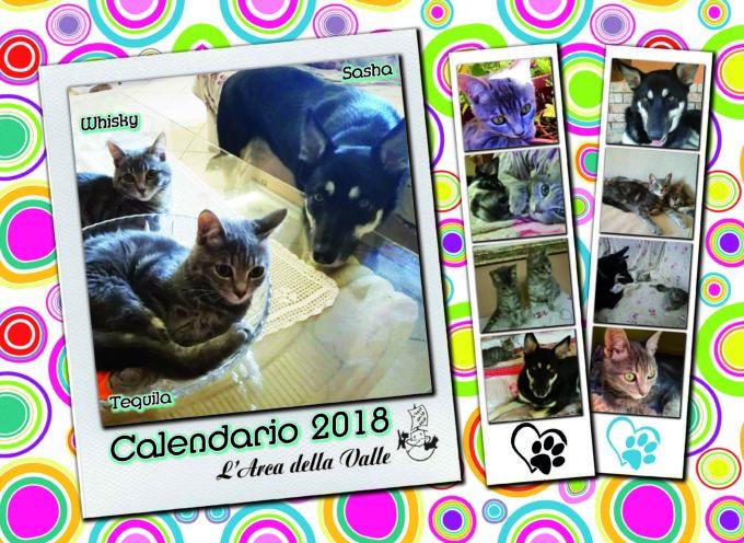 """E' uscito il calendario 2018 dell'associazione Onlus per la difesa degli animali """"L'Arca della Valle"""" di Barga (LU)"""
